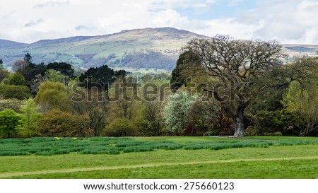 Spring time in Snowdonia - stock photo