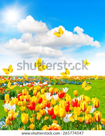 Spring time landscape with butterflies and sunny blue sky. Meadow with assorted flowers in green grass - stock photo