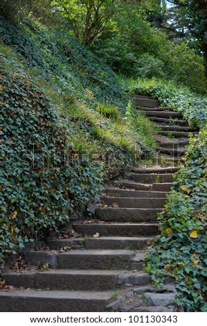 Spring time: step way in the garden - stock photo