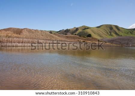 spring time view of Pouawa River and tidal estuary, marine reserve, near Gisborne, East Coast, North Island, New Zealand  - stock photo