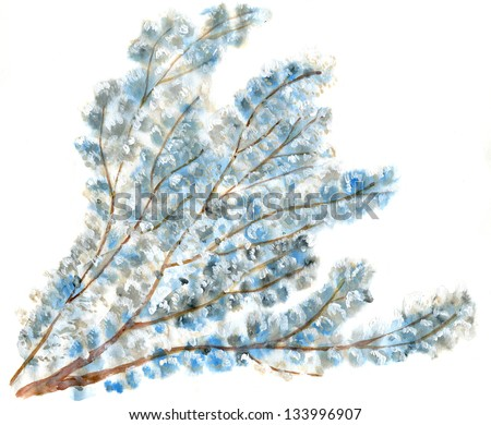 Spring tree in blossom isolated - stock photo