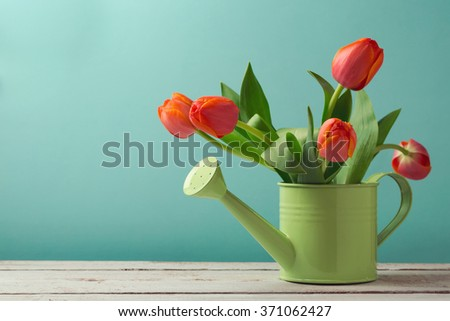 Spring tulip flower bouquet in watering can with copy space. Gardening concept - stock photo