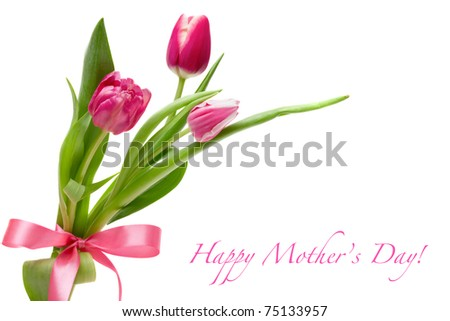 Spring tulips with a pink bow isolated on white - stock photo