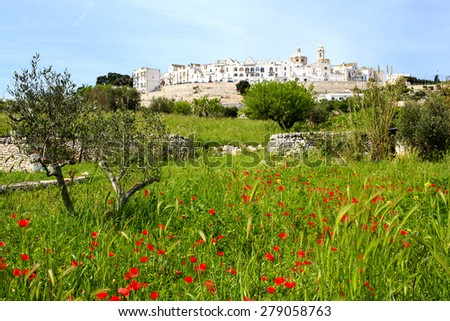 Spring view of the Locorotondo town in Puglia (southern Italy) with poppies field on the foreground. Locorotondo is one of the famous tourist attraction in Apulia. - stock photo