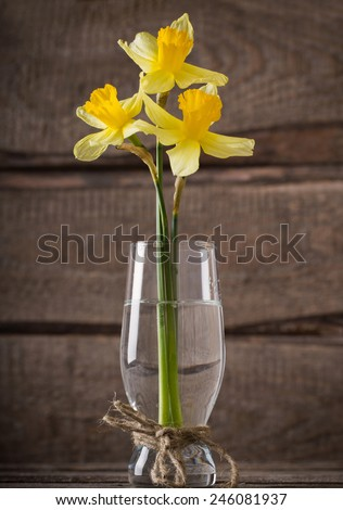 spring yellow bouquet on wooden background - stock photo