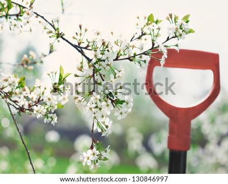Springtime - stock photo