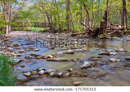 Springtime foliage emerges around an iron bridge that crosses a rocky creek at Waterfall Glen. - stock photo