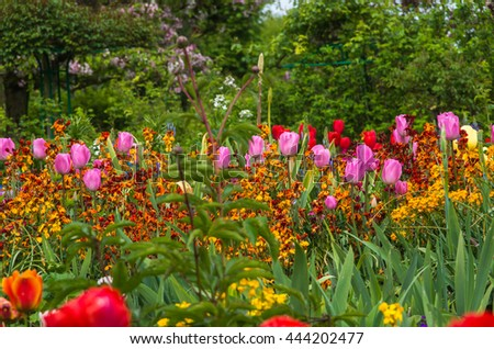 Springtime garden in Giverny France has an abundance of beautiful flowers - stock photo