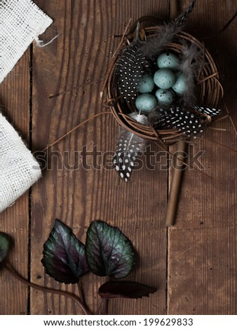 Springtime still life of robin eggs in a nest on a wooden background.   - stock photo