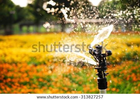 sprinkler. - stock photo