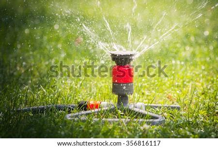 Sprinkler head spraying water on green lawn - stock photo