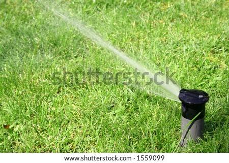Sprinkler watering lawn - stock photo