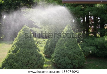 sprinklers splash water on trees from height - stock photo