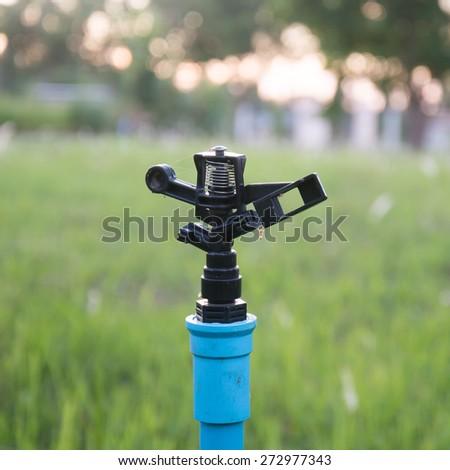 sprinklers watering  - stock photo