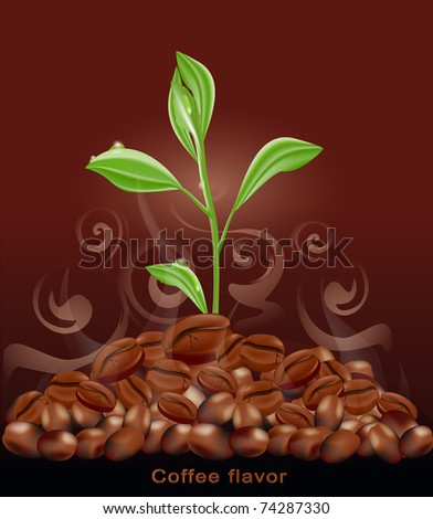 sprout grows from a pile of coffee on a brown background - stock photo
