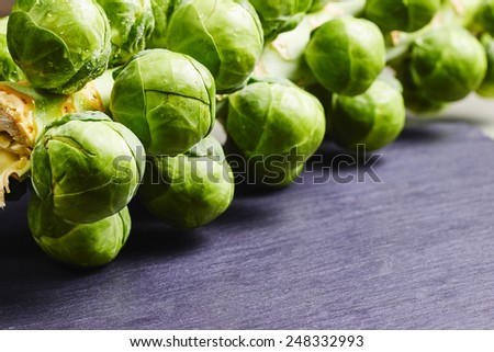 Sprouts on the stalk, with space for text on black slate - stock photo