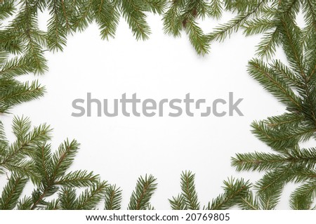 Spruce frame with white background - stock photo