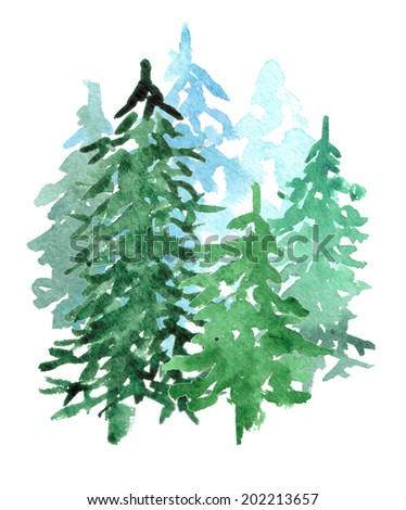 Spruce Grove on white background - stock photo