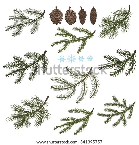Spruce tree green branches,pine cones .Christmas fir isolated decor elements for invitations,print and web,cards, banner.New year holiday ,nature wood illustration,Winter template - stock photo