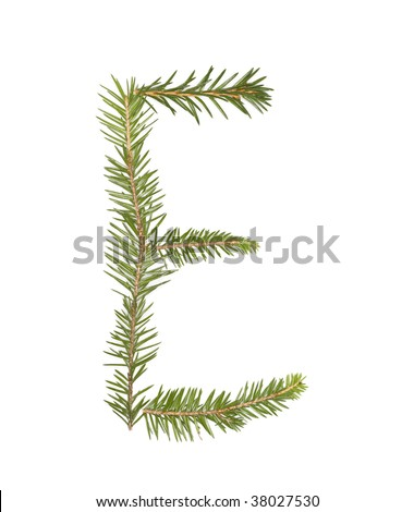 Spruce twigs forming the letter 'E' isolated on white - stock photo