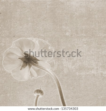 Square vintage texture with flower flip side and bud - stock photo