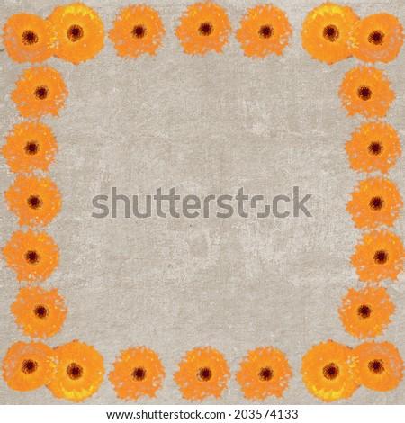 Square vintage textured frame with orange chrysanthemum flowers - stock photo