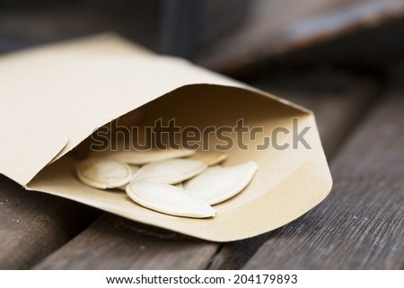 Squash seeds in seed packet for planting in the garden. - stock photo