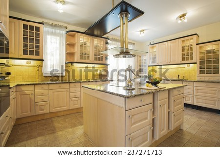 Squeezer on worktop in beauty designed kitchen - stock photo