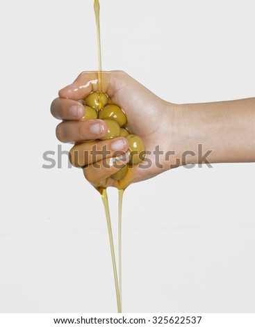 Squeezing olives oil,Olive oil pouring out. Pouring olive oil. Olive oil.Olive oil concept. - stock photo