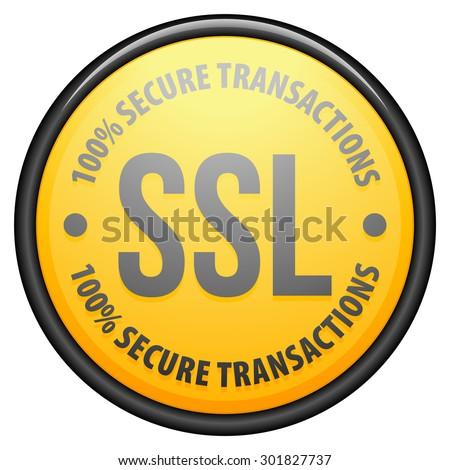 SSL 100% Secure Transactions - stock photo