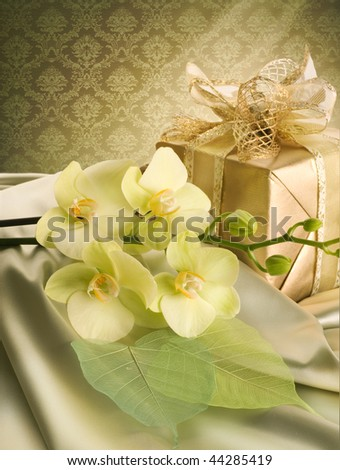 St.Valentine's Day Present - stock photo