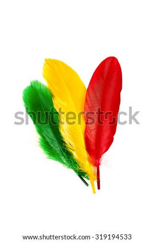 Stack of feathers on white background.Used color tool for color tone. - stock photo