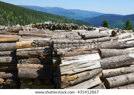Stack of firewood in mountains waiting for winter. Krkonose (Giant) mountains, Czech Republic - stock photo