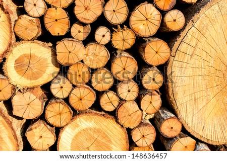 Stack of freshly chopped wood - stock photo