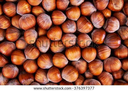 Stack of hazelnuts. Hazelnut background - stock photo