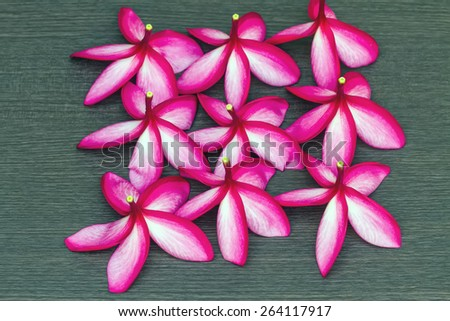 Stack of red and pink  Frangipani or Plumeria flower on black wooden background. Spa concept - stock photo
