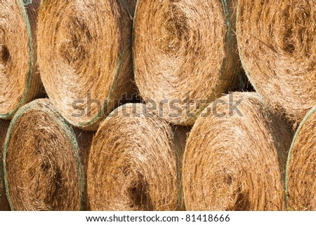 Stack of round hay bales drying outdoors - stock photo