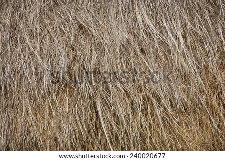 Stack of the old straw as a background - stock photo