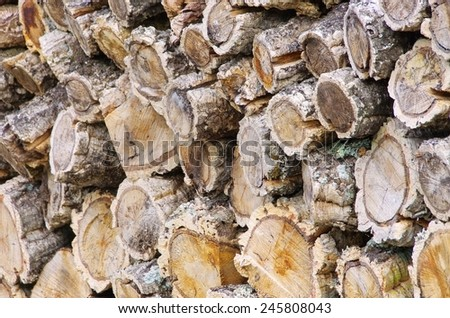 stack of wood from cork oak  - stock photo