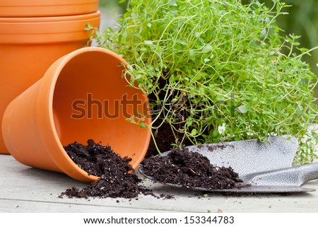Stacked empty plant pots with shovel and herbs on garden table - stock photo