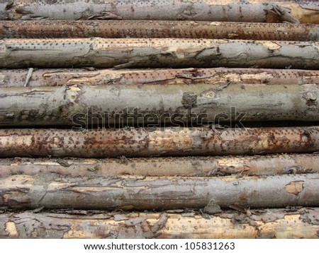 stacked log cut trees - stock photo