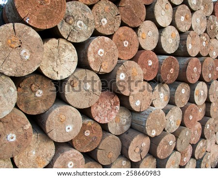 Stacked Lumber - stock photo