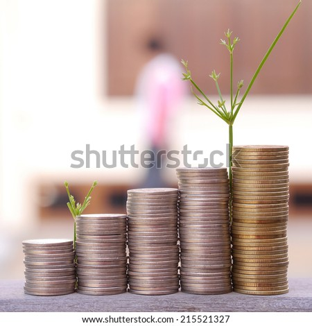 Stacks of coins and tree - stock photo