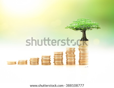 Stacks of golden coins with big tree over blurred nature background. Fund, Investment, Agriculture, ROI, Trust, Saving, Baking, Retirement, Future, CSR, Give concept. - stock photo