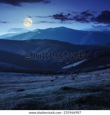 Stacks of hay on a green meadow on hillside  in mountains at night in full moon light - stock photo