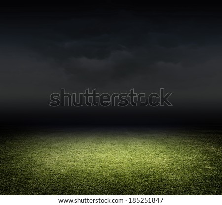 Stadium grasss - stock photo