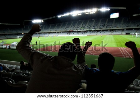 Stadium with fans silhouettes - stock photo
