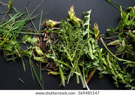 Stage of Preparation of Decor for Easter. Bio and Natural way of painted eggs with fresh leaves. - stock photo
