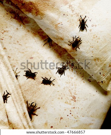 stained bedding with bugs - stock photo