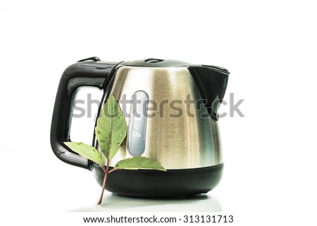 stainless electric kettle isolated on white background with green leaf - stock photo